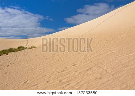 A man walking up on high sand hill ridge from afar at Little Sahara white sand dune system on Kangaroo Island, South Australia