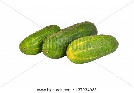 Green Cucumber Gherkin