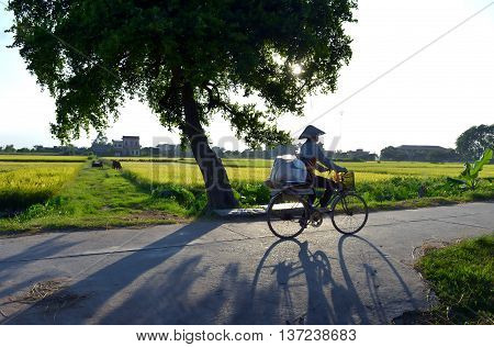 QUANG TRI, VIETNAM April 18, 2016 the woman, Quang Tri countryside, cycling on the way home