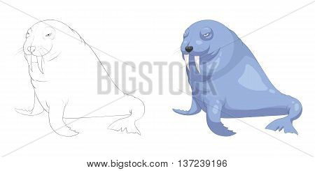 Sea Lion. Coloring Book, Outline Sketch, Animal Mascot, Game Character Design isolated on White Background