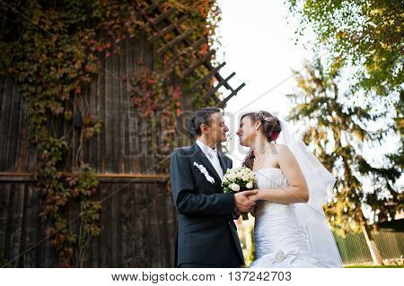 Newlyweds background old wooden mill at wedding