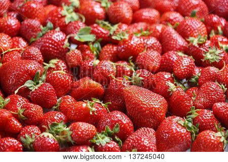 Deluxe Strawberry. Close up high resolution product. Harvest Concept