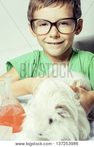 little cute boy with medicine glass isolated wearing glasses smiling close up, holding white guinea pig, cavy for science
