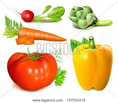 Collection of vegetables. Fully editable handmade mesh. Vector illustration.