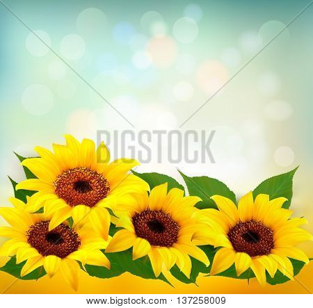 Sunflowers Background With Sunflower And Leaves. Vector.