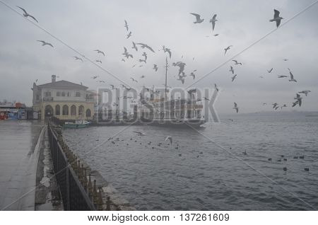 Istanbul Turkey - January 27 2013: Istanbul Kadikoy. Foggy morning waiting to ferry passengers and dancing seagulls. Dancing seagulls on the pier. Seagulls are fed with food provided by people around the harbor.