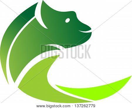 stock logo green animal chameleon icon silhouette illustration