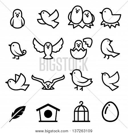 Bird icon set vector illustration graphic design