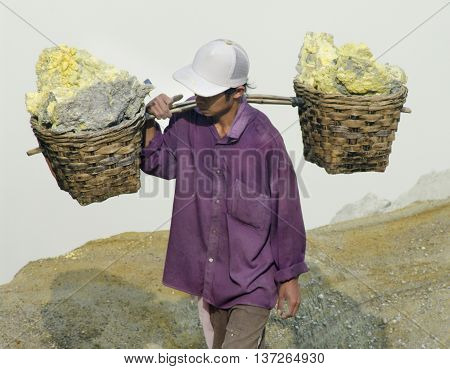 IJEN VOLCANO INDONESIA - JAN 10: Worker carrying sulfur inside Ijen crater on January 10 2011 in Ijen Volcano Indonesia. He carries the load of around 60kg to the top of the rip and then 3km down.