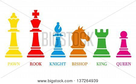 Set of named chess piece vector icons colored silhouettes on white showing the king queen rook bishop knight and pawn.