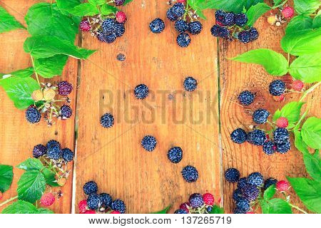 still life from black raspberry and green leaves on the brown boards