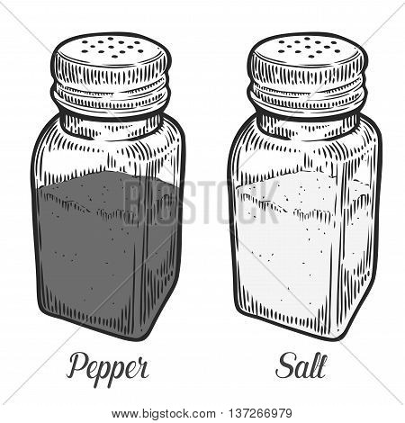 Salt Shaker, Pepper Shaker . Retro Hand Drawn Vintage Vector Engraving Illustration For Label, Poste