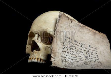 Skull And Manuscript