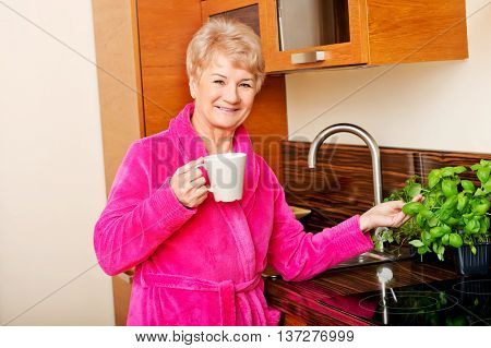 Happy senior woman standing in kitchen drinking coffee and touching basil leaf