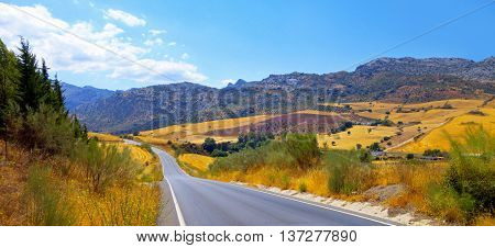 On the way from Ronda to Malaga Spain.