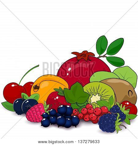 Juicy Summer Berries and Fruits , Natural Organic Concept, Fruits Isolated on White Background, Fresh Eco Fruits, Healthy Food Concept, Vector Illustration