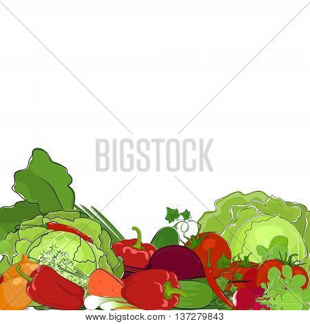 Fresh Raw Vegetables, Eco Vegetables, Healthy Food Concept, Natural Organic Concept, Vector Illustration