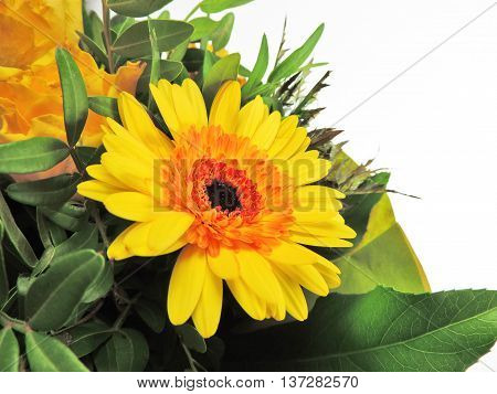 Yellow flower bouquet, isolated on white background
