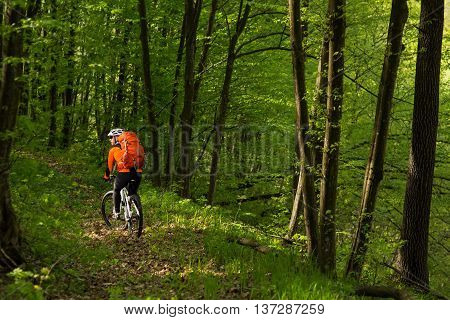 Biker with backpack on the forest road