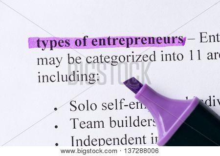 Types Of Enterpreneurs Word Highlighted