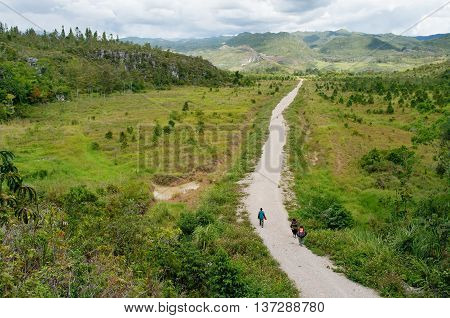 Road In Mountains, New Guinea