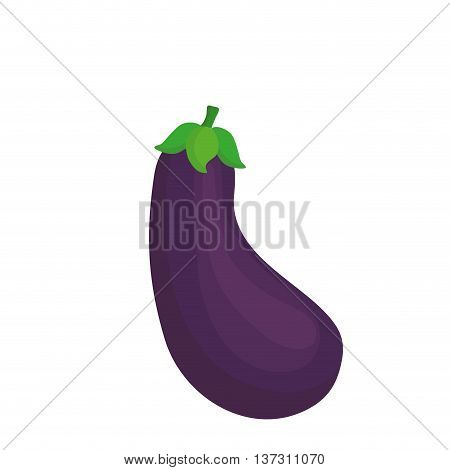 Fresh vegetable isolated icon design, healty food concept vector illustration.