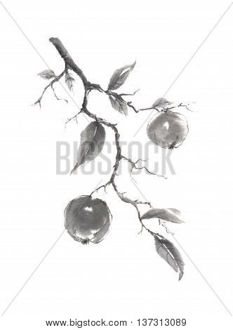 Japanese style original sumi-e apple branch ink painting. Great for greeting cards or texture design.