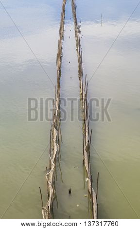 Bamboo fence and nest on water to catch fish and other seafood in traditional way