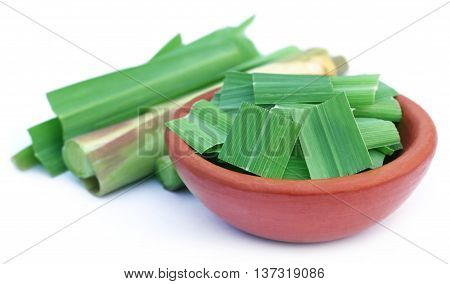 Lemongrass in a pottery over white background