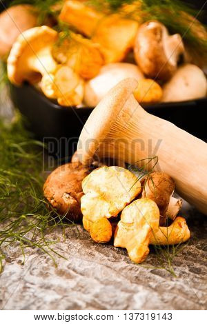 Cantharellus Cibarius, Commonly Known As The Chanterelle, Golden