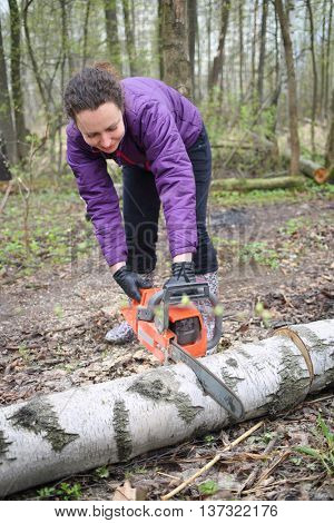 Woman sawing birch trunk using a chainsaw in the forest