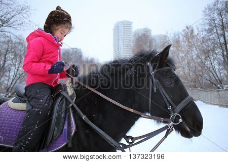 Girl in winter clothes on a black horse at the equestrian site in front of trees and buildings