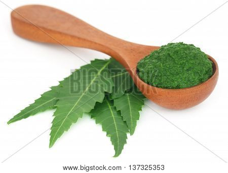 Medicinal neem leaves with ground paste in a wooden spoon over white background
