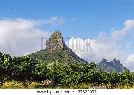 Piton De La Petite Mountain In Mauritius Panoramic