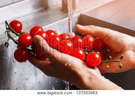 Man's hands washing tomatoes. Tomato branch under water flow. Fresh homegrown vegetable. Not a single pesticide.
