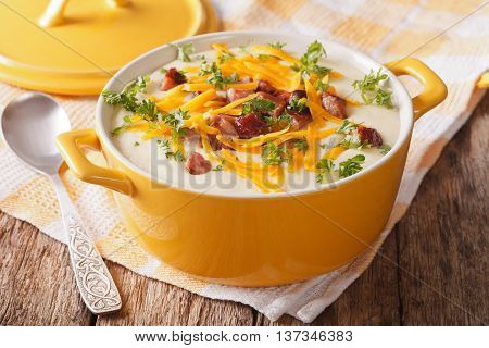 Delicious Cream Potato Soup With Bacon And Cheddar Cheese Close-up. Horizontal