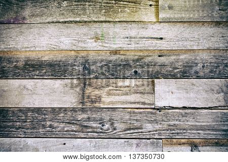 Old wood planks texture background. Natural texture