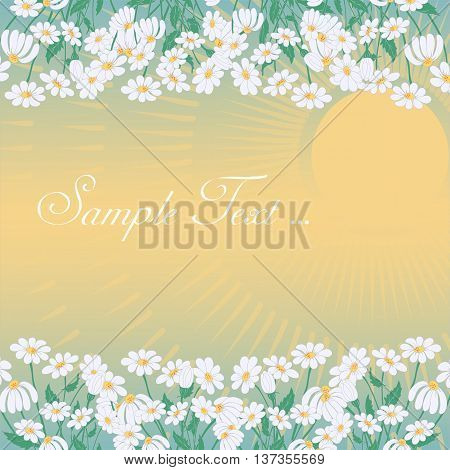 Summer Sunset Greeting Card with Chamomiles Frames Space for Text and Sun Beams. Vector EPS10