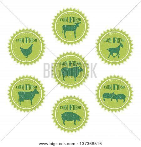Set of vintage labels templates farm animals of butchery shop. Grunge texture