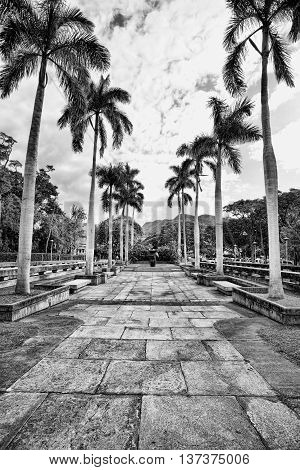 Walkway path  in Honolulu Hawaii.in black and white.