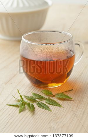Glass with Neem tea and Neem twig