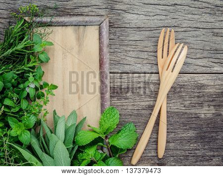 Aromatic Herbs And Spices  Green Mint ,fennel ,oregano, Sage,lemon Thyme And Peppermint With Fork  O