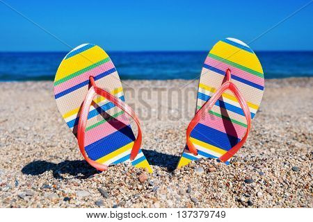 closeup of a pair of colorful striped flip-flops with pink straps stuck on the sand of a beach