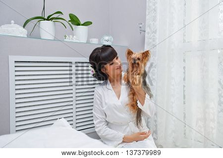 Girl holds a Yorkshire terrier in the room. Home pet. Pedigree dog. Funny animals.