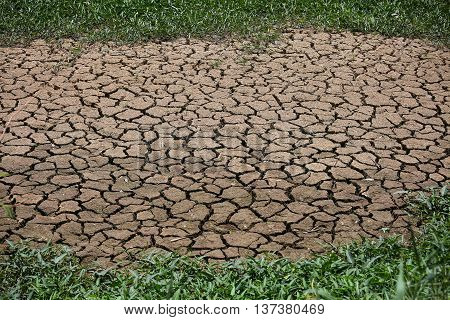 cracked ground background and empty area for text, dry ground and hot surface of ground in summer, hot ambient around cracked surface because greenhouse effected. no any life stay around the area.