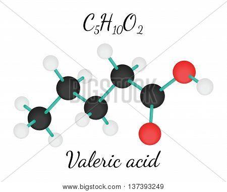 C5H10O2 Valeric acid 3d molecule isolated on white