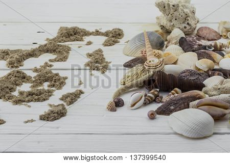 A variety of seashells corals shell starfish isolated on white background on wooden boards