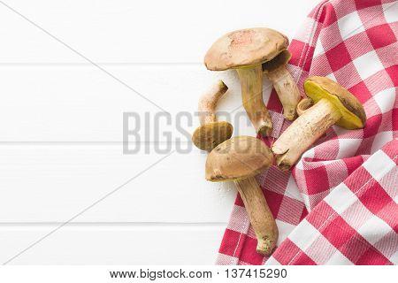 Autumn harvest of fresh woodland fungi with boletus mushrooms on white table.