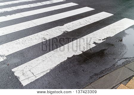 The wet and empty pedestrian crosswalk on city street safety concept.