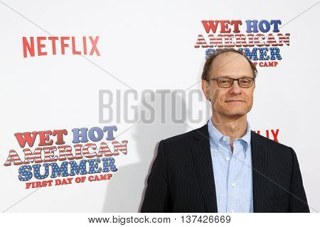 NEW YORK-JUL 22: Actor David Hyde Pierce attends the 'Wet Hot American Summer: First Day of Camp' Series Premiere at SVA Theater on July 22, 2015 in New York City.